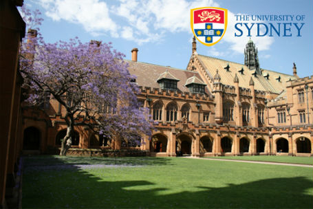 Dentistry law universities in sydney